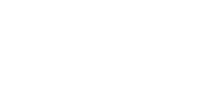 lots newsletter icon